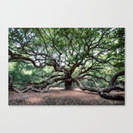 Oak of the Angels Canvas Print