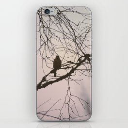 Bird and branches iPhone Skin