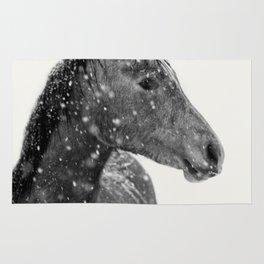 Horse Animal Photography Rug