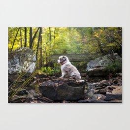 Rocky Hike Canvas Print