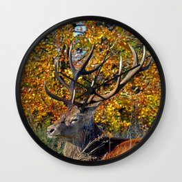 Red Deer Resting Wall Clock