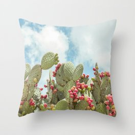 Mexican Throw Pillow