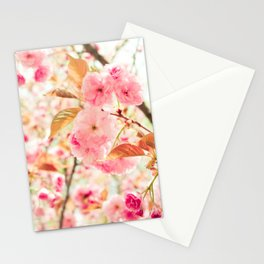 Pink Blooms (2) Stationery Cards
