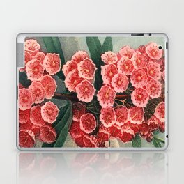 Pink Floral The Narrow-leaved Kalmia : Temple of Flora Laptop & iPad Skin