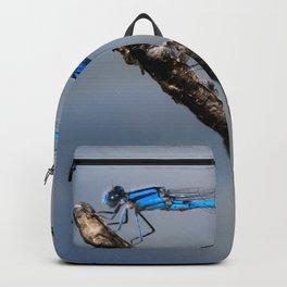 Damselflies Backpack