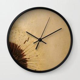 Diaphanus Wall Clock