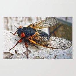 Red Eyed Cicada Rug