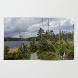 Nature around the lake Rug