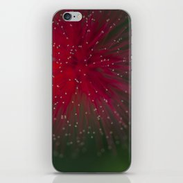 Macro photograph of the Calliandra flower. iPhone Skin