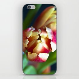 Symphony of Spring iPhone Skin