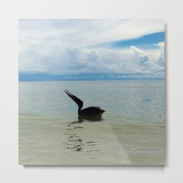 pelican caught singing - clams up Metal Print