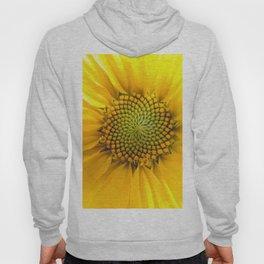 sunflower light Hoody