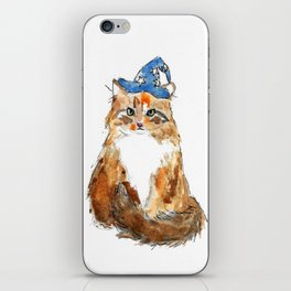 Maine Coon Cat Wizard iPhone Skin