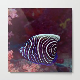 Fingerprint fish Metal Print