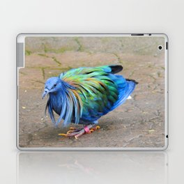 Nicobar Pigeon Strut Laptop & iPad Skin