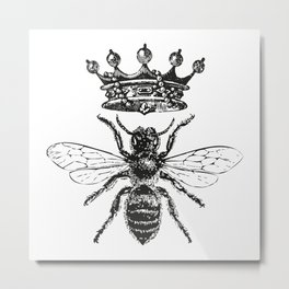 Queen Bee   Black and White Metal Print