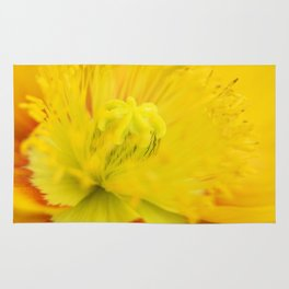 Iceland Poppy Close Perspective Rug