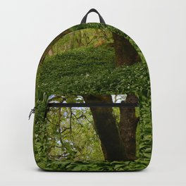 Floor of Green Backpack
