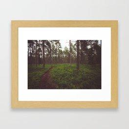 Swedish Views #5 Framed Art Print