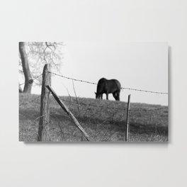 Patterson Hill Fine Art Photography Metal Print