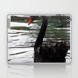Black swan on the water Laptop & iPad Skin