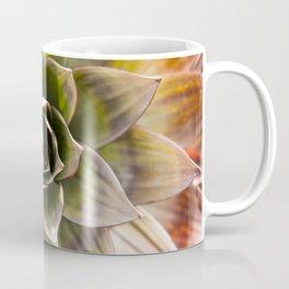 Bromeliad Coffee Mug