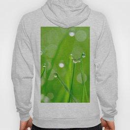 Green Grass Grows, Water droplets, Macro Fine Art Photography Hoody