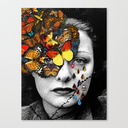 Butterfly Jewel. Canvas Print