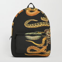 Snakes at Night Backpack
