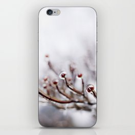 Icy Branches #2 iPhone Skin