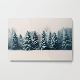 Winter & Woods Metal Print