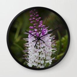 Hebe Lilac Wall Clock