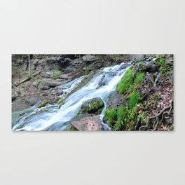 Mossy Spring Panorama Canvas Print
