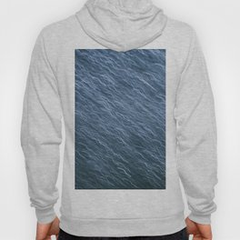 Wired Blues Hoody