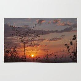 Last days of Summer. Sunset near autumn.... Rug