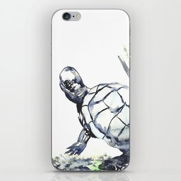 Slow and Steady iPhone Skin