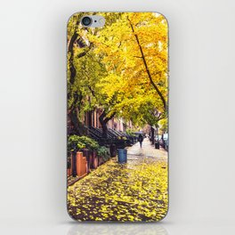 Autumn in Brooklyn iPhone Skin