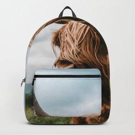 Scottish Highland Cattle - Animal Photography Backpack
