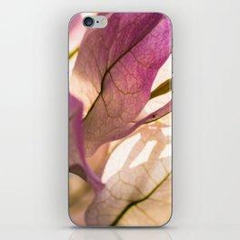 Pink Bougainvillea iPhone Skin