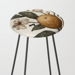 Clementine Counter Stool