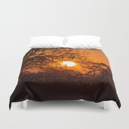 Sultry sun setting behind the sausage tree Duvet Cover