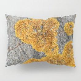 Yellow Lichen Pillow Sham