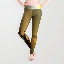 Sun Worshipper  Leggings