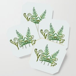Fern Collage with Light Blue Gray Background Coaster