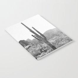 Arizona Desert Notebook