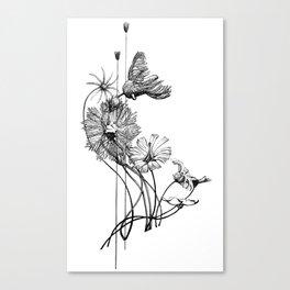 Chord of Crinoids Canvas Print