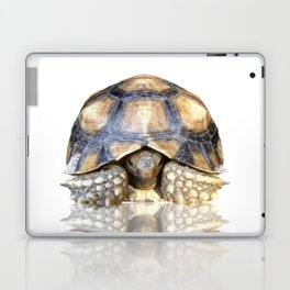 Sulcata Tortoise with Reflection Laptop & iPad Skin