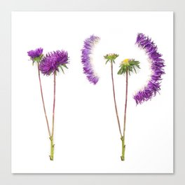 Deconstructed Flower Canvas Print