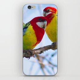 Eastern Rosellas iPhone Skin