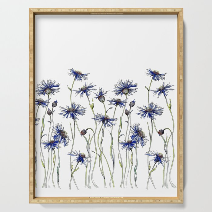 Blue Cornflowers, Illustration Serving Tray